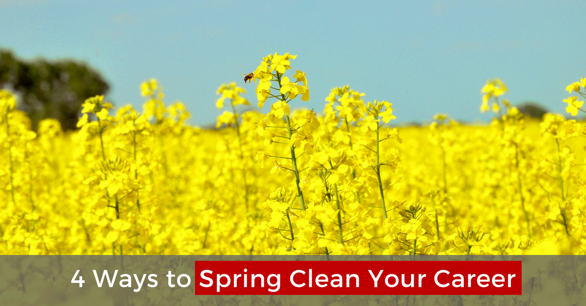 4 Ways to Spring Clean Your Career